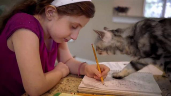 Iams Purrfect Delicacies TV Spot, 'Ginger' - Thumbnail 8