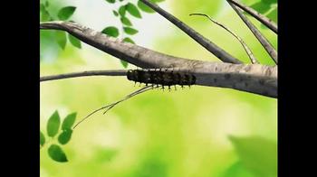 Live Butterfly Garden TV Spot - Thumbnail 1