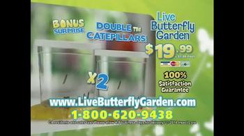 Live Butterfly Garden TV Spot - Thumbnail 10