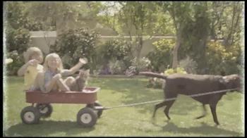 PETCO TV Spot, 'End to Pet Cancer' - Thumbnail 4