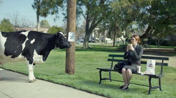 Chick-fil-A TV Spot, 'Missing Cow' - Thumbnail 2