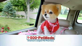 1-800-PetMeds TV Spot, \'Save 10%, 20%, 50%\'