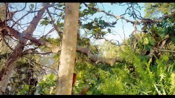 Island Of Lemurs: Madagascar - Alternate Trailer 1