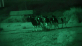 Chick-fil-A TV Spot, 'Night Vision' - Thumbnail 2