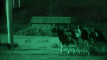 Chick-fil-A TV Spot, 'Night Vision' - 115 commercial airings