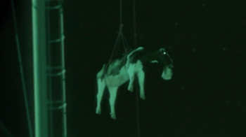 Chick-fil-A TV Spot, 'Night Vision' - Thumbnail 4