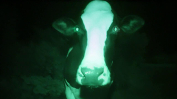 Chick-fil-A TV Spot, 'Night Vision' - Thumbnail 6