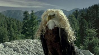 iD Gum TV Spot, 'Bald Eagles with Hair' - 843 commercial airings
