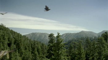 iD Gum TV Spot, 'Bald Eagles with Hair' - Thumbnail 7