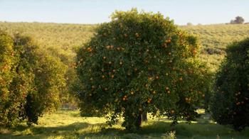 Simply Orange TV Spot 'Add Nothing' - Thumbnail 1