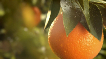 Simply Orange TV Spot 'Add Nothing' - Thumbnail 3