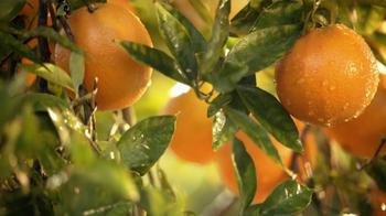 Simply Orange TV Spot 'Add Nothing' - Thumbnail 4