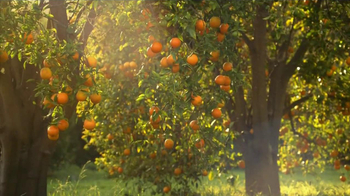 Simply Orange TV Spot 'Add Nothing' - Thumbnail 5
