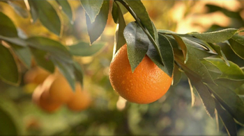Simply Orange TV Spot 'Add Nothing' - Thumbnail 6