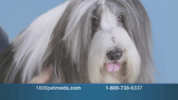 1-800-PetMeds TV Spot, 'Keeping Our Pets Healthy' - Thumbnail 6