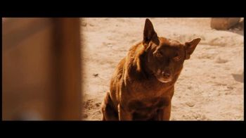 ARC Entertainment TV Spot for Red Dog - 4 commercial airings