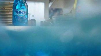 Dawn TV Spot, 'Sponge Race' - Thumbnail 4