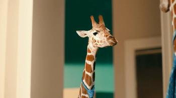 Residence Inn TV Spot, 'Giraffe' - Thumbnail 5