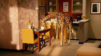 Residence Inn TV Spot, 'Giraffe' - Thumbnail 7