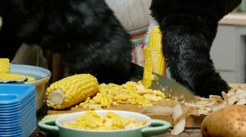Kid Cuisine Popcorn Chicken TV Spot, 'Penguins' - Thumbnail 2