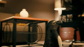 Residence Inn TV Spot, 'Penguins' - Thumbnail 3