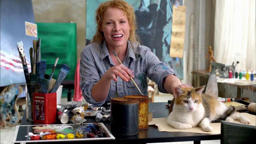 Purina Indoor Cat Food Vs Friskies Indoor Cat Food