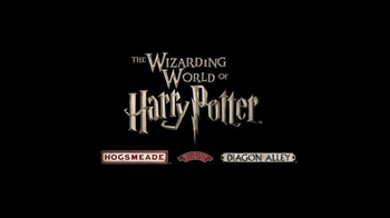 The Wizarding World of Harry Potter TV Spot, 'Lightning: Diagon Alley: Save Up to 30 Percent' - Thumbnail 7