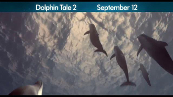 Dolphin Tale 2 - Alternate Trailer 20