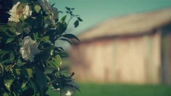 Glade TV Spot, '¿Qué es lo que Glade inspirará en ti?' [Spanish] - Thumbnail 1