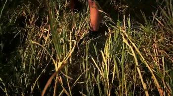 L.L. Bean TV Spot, 'Field Testing' - Thumbnail 2