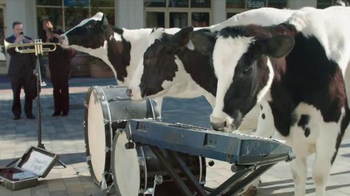 Chick-fil-A Grilled Chicken Nuggets TV Spot, 'Talented Cows' - 107 commercial airings
