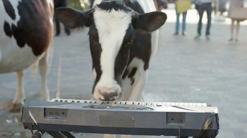 Chick-fil-A Grilled Chicken Nuggets TV Spot, 'Talented Cows' - Thumbnail 6