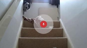 Google App TV Spot, 'Bad Dog' - Thumbnail 5