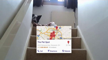 Google App TV Spot, 'Bad Dog' - Thumbnail 6