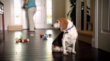 The Shelter Pet Project TV Spot, 'Toys' - Thumbnail 3
