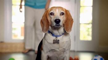 The Shelter Pet Project TV Spot, 'Toys' - Thumbnail 4