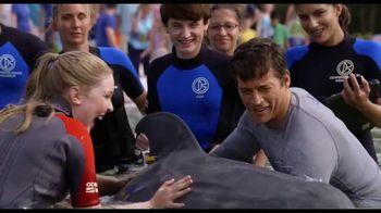 Dolphin Tale 2 - Alternate Trailer 17