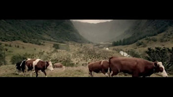 Courtyard Marriott TV Spot, 'Herding Cows' - Thumbnail 1