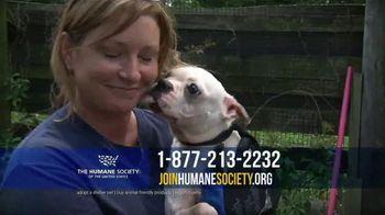 Humane Society TV Spot, 'Support'