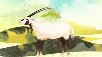 Fauna & Flora International TV Spot, 'Connections Matter' Feat. Betty White - Thumbnail 5