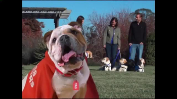 Mattress Discounters TV Spot, 'Good Deed Dogs: Helping Dogs Help Veterans' - Thumbnail 1