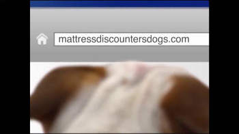 Mattress Discounters TV Spot, 'Good Deed Dogs: Helping Dogs Help Veterans' - Thumbnail 9