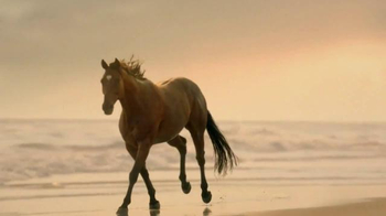 Strongbow TV Spot, 'Slow Motion Horse'
