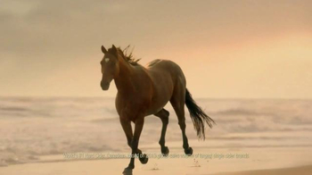 Strongbow TV Spot, 'Slow Motion Horse' - Thumbnail 6