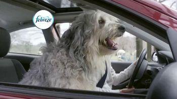 Febreze Car Vent Clips TV Spot, 'Driving Dog Odors' [Spanish] - Thumbnail 1