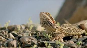 PetSmart TV Spot, 'National Geographic Pet Products' - Thumbnail 1
