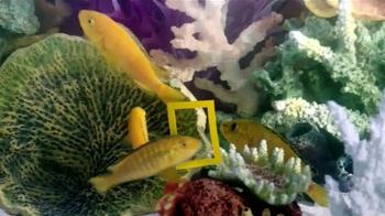 PetSmart TV Spot, 'National Geographic Pet Products' - Thumbnail 4