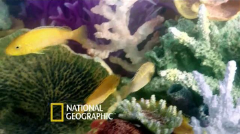 PetSmart TV Spot, 'National Geographic Pet Products' - Thumbnail 5