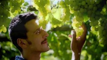 Alessi Balsamic Vinegar TV Spot, 'Alessi is Amore' - Thumbnail 6