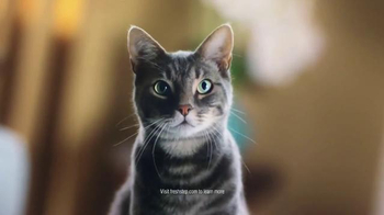 Fresh Step Extreme Lightweight Hovercat TV Spot, 'Hypnotic' - Thumbnail 4
